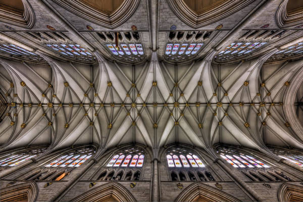 Ceiling Wall Art - Photograph - Rise Above by Evelina Kremsdorf