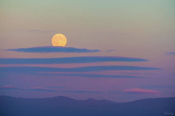 Photograph - Rising Harvest Moon  by Dee Browning
