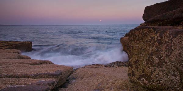 Photograph - Rising Moon by Darylann Leonard Photography