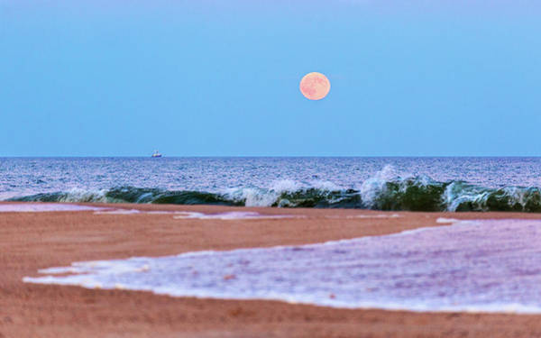 Photograph - Rising Moon by Mercedes Noriega