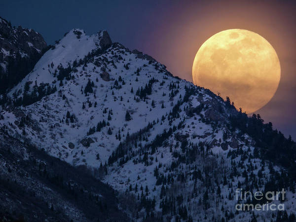 Photograph - Rising Moon by Spencer Baugh