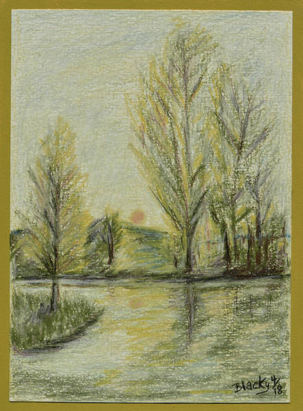 Drawing - Rising On Country Pond by Donna Blackhall