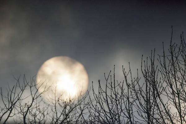 Photograph - Rising Sun Moody Sky Gray by Terry DeLuco