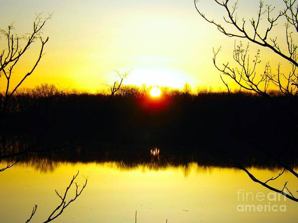 Photograph - Rising Sun On The Delaware River  by Robyn King