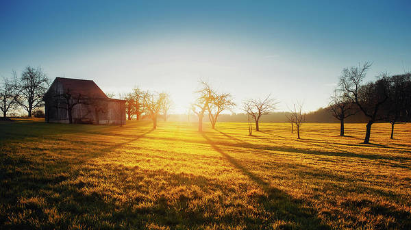 Reiner Photograph - Rising Sun by Philipp Reiner