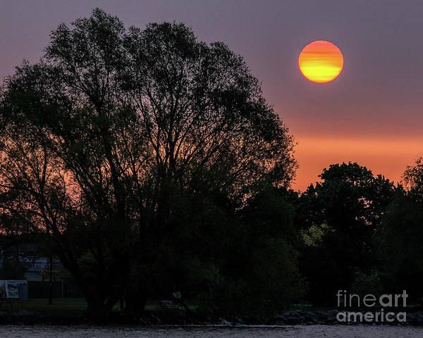 Photograph - Rising Sun by Rod Best