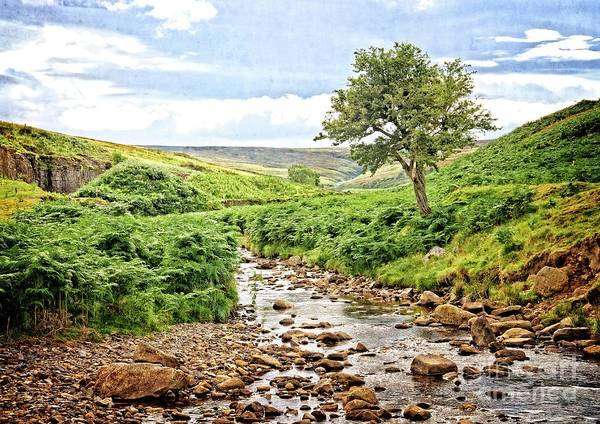 Photograph - River And Stream In Weardale by Martyn Arnold