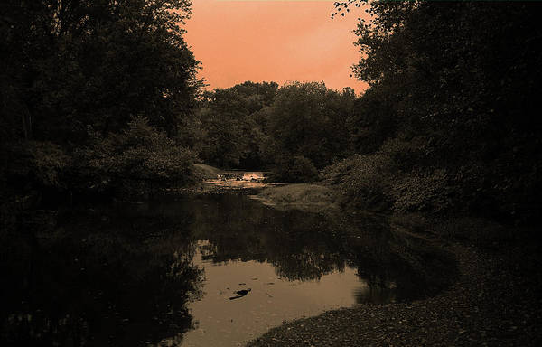 Photograph - River And Trees Sepia 2017 by Frank Romeo