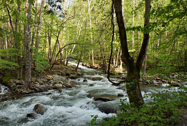 Photograph - River At Greenbrier by Sandy Keeton
