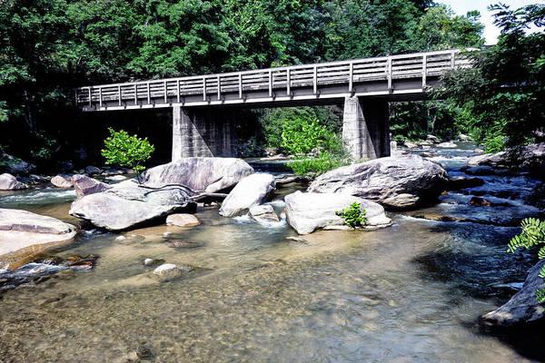 Photograph - River Bank Series Y6032 by Carlos Diaz