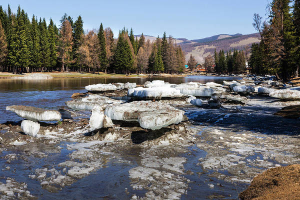 Photograph - River Bashkaus With Drifted Ice. Altay by Victor Kovchin