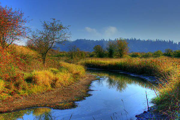Photograph - River Bend by David Patterson
