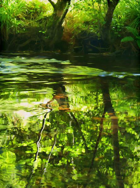 Photograph - River Bovey by Pete Hemington