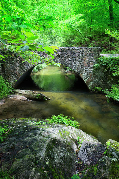 Photograph - River Bridge Series Y6536 by Carlos Diaz