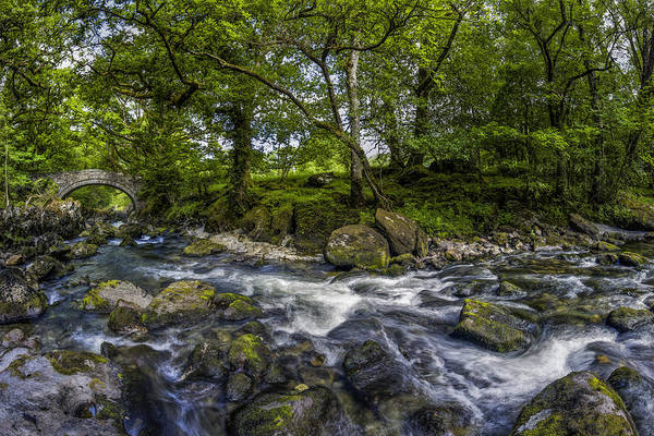 Photograph - River Conwy by Ian Mitchell