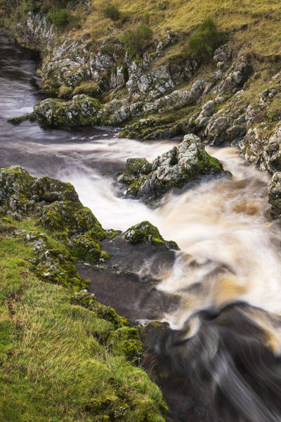 Northumbria Photograph - River Coquet Vertical by David Taylor