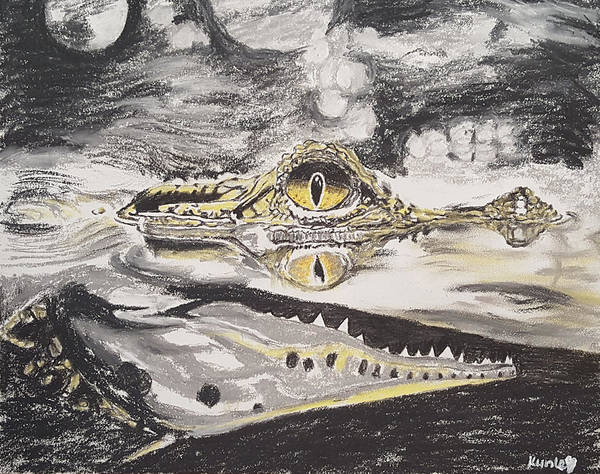 Drawing - River Crocodile by Adekunle Ogunade