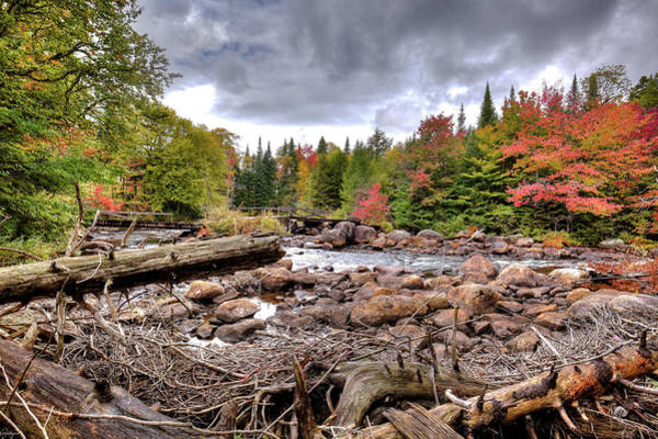 Photograph - River Debris At Indian Rapids by David Patterson