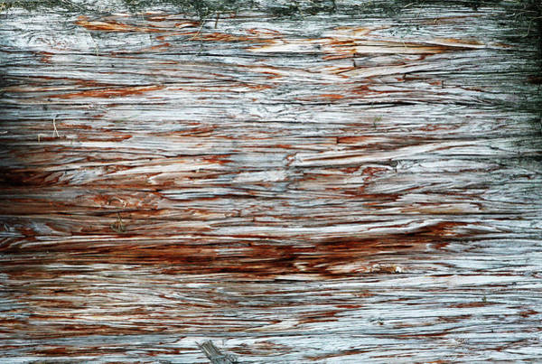 Wall Art - Photograph - River Dock Wood Abstract by Marilyn Hunt