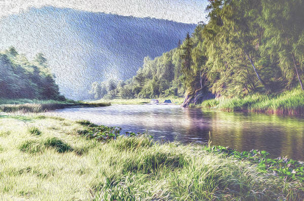 Photograph - River Flows Through Forests And Mountains by John Williams