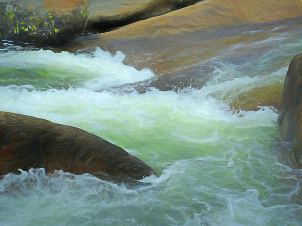 Mixed Media - River Frolic 5 by Lynda Lehmann