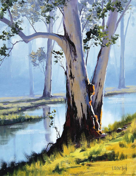 Old Tree Painting - River Gum by Graham Gercken