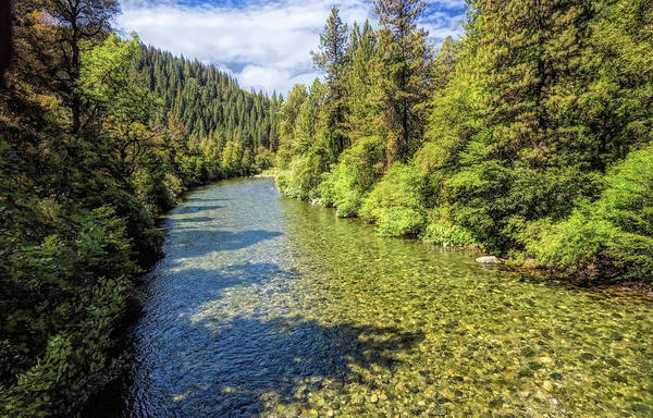 Photograph - River Happy Place by Bill Posner