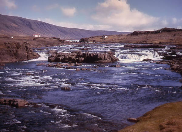 Photograph - River In Iceland by Richard Goldman