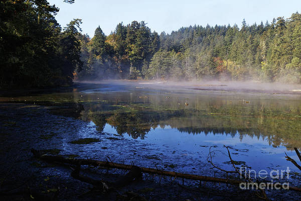 Photograph - River In The Fall Mist by Sue Harper