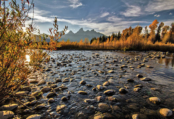 Photograph - River In The Tetons by Wesley Aston