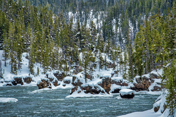 Photograph - River In Winter #2 - Yellowstone by Stuart Litoff