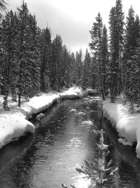 Photograph - River In Yellowstone by Pat Moore