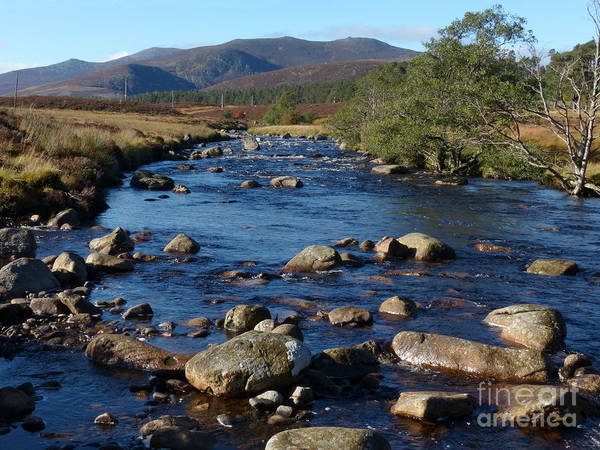 Photograph - River Muick And Conachcraig by Phil Banks