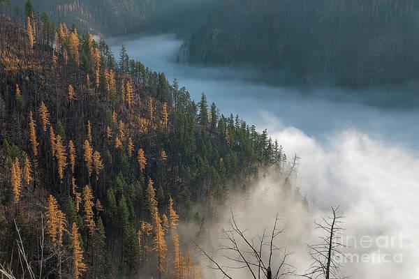 River Of Mist Art Print