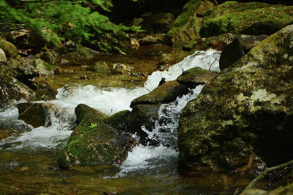 Photograph - River Rages On Maryland Appalachian Trail by Raymond Salani III
