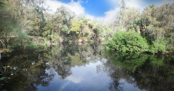 Photograph - River Reflections by Judy Hall-Folde