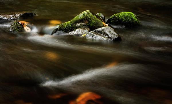Nantahala Photograph - River Rock by Greg and Chrystal Mimbs