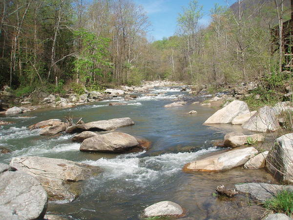 Photograph - River Rocks And Flow by Allen Nice-Webb