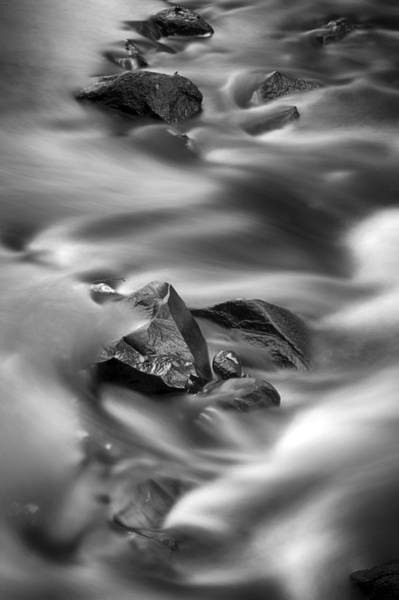 Photograph - River Rocks by CA  Johnson