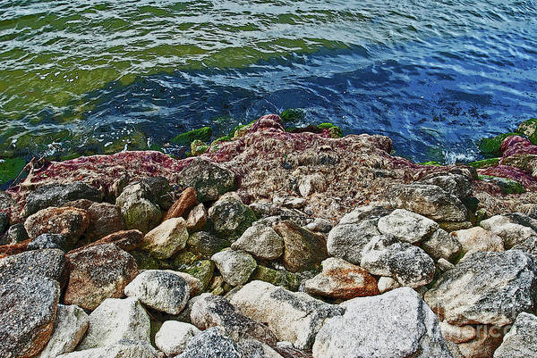 Photograph - River Rocks by George D Gordon III