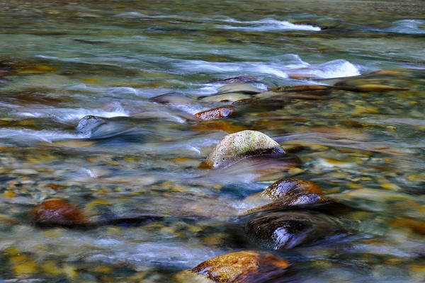 Alouette Wall Art - Photograph - River Rocks by Marion McCristall