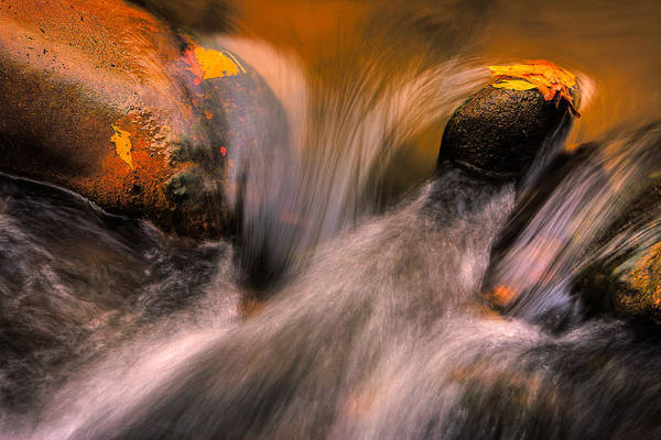 Photograph - River Rocks, Zion National Park by Peter OReilly