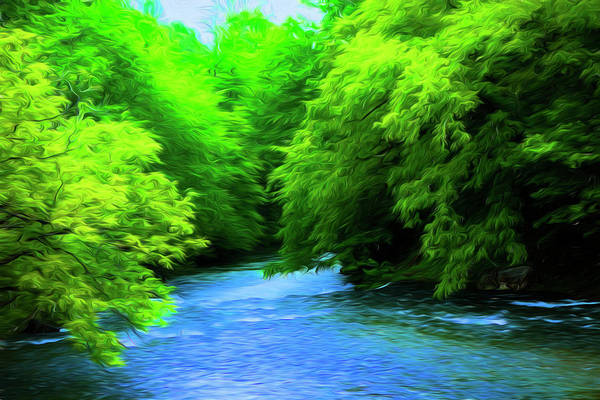 Photograph - River Series Y5368 by Carlos Diaz