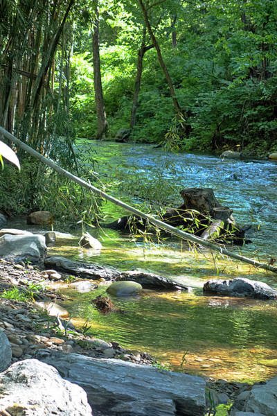 Photograph - River Series Y5614 by Carlos Diaz