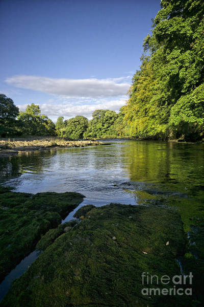 Wall Art - Photograph - River Swale by Smart Aviation