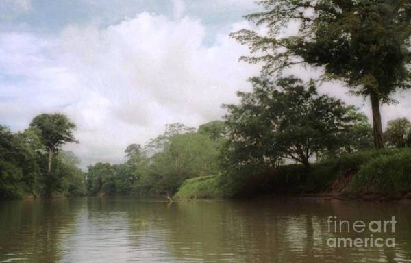 Photograph - River Tour Costa Rica by Ted Pollard