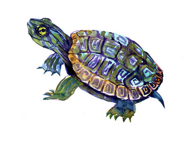 Wall Art - Painting - River Turtle, Slider Artwork Illustration by Suren Nersisyan
