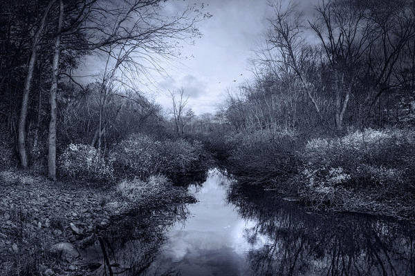 Photograph - River Whispers by Robin-Lee Vieira
