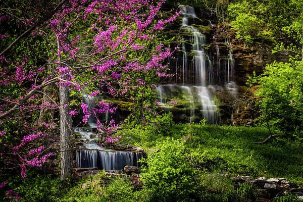 Photograph - Rivercut Waterfall by Allin Sorenson