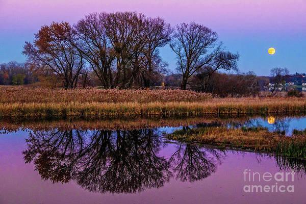 Photograph - Riverglow by Neil Shapiro
